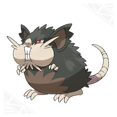 Rattatac Alola Pokémon Soleil et Lune
