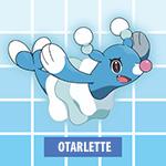 Otarlette Pokémon Soleil et Lune