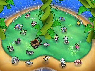 Îlot Relax : Niveau 3 Pokéloisirs Pokémon Ultra-Soleil et Ultra-Lune