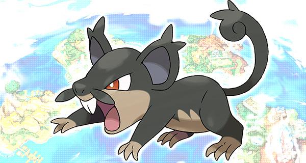 Rattata d'Alola dévoilé lors du Nintendo Direct  + Distribution d'un Goinfrex sur Pokémon Soleil et Lune